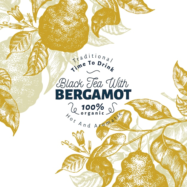 Modèle de conception de branche bergamote. cadre kaffir lime. illustration de fruits vecteur dessiné à la main. Vecteur Premium