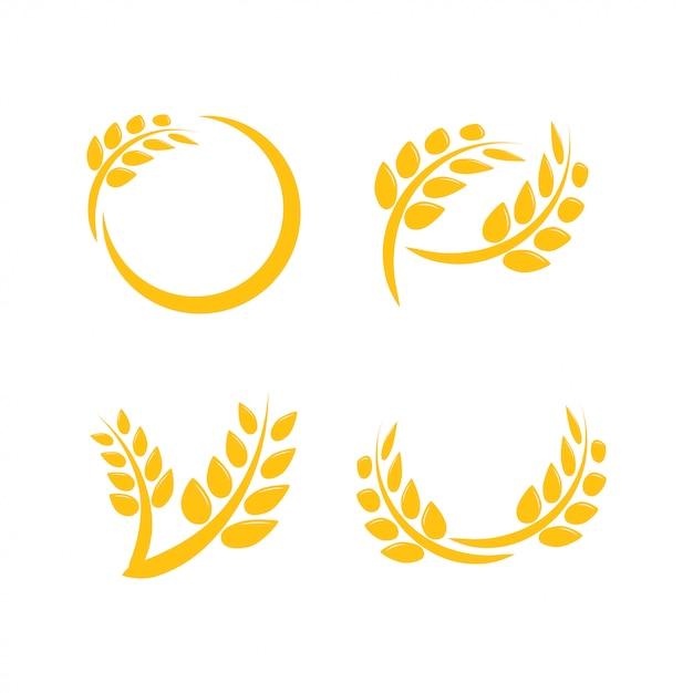 Modèle de conception graphique de l'agriculture de blé Vecteur Premium