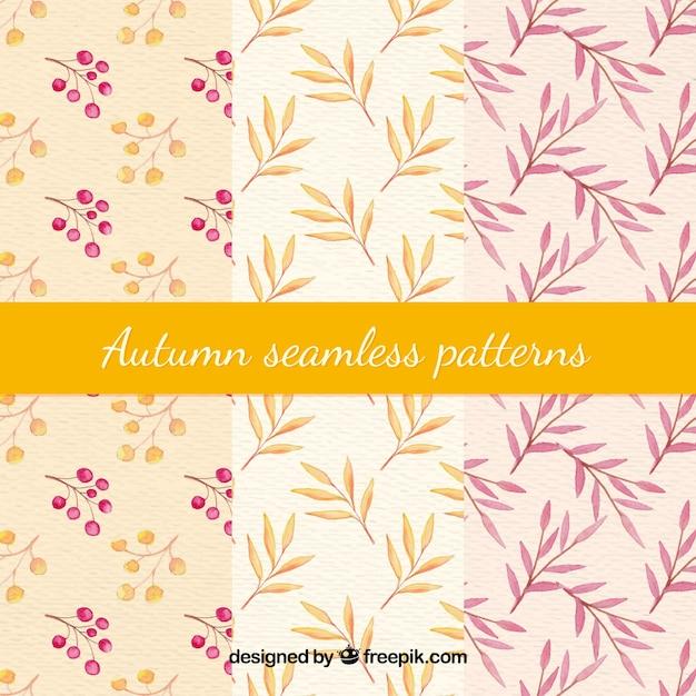 Modèle d'automne avec des feuilles Vecteur gratuit