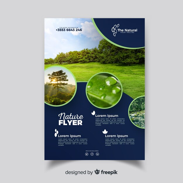 Modèle de flyer nature avec un design moderne Vecteur gratuit