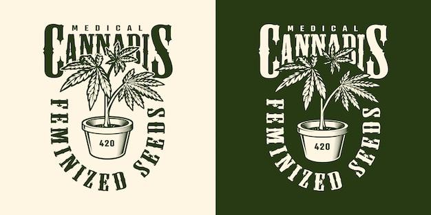 Modèle D'étiquette De Fleur De Cannabis Vintage Vecteur gratuit