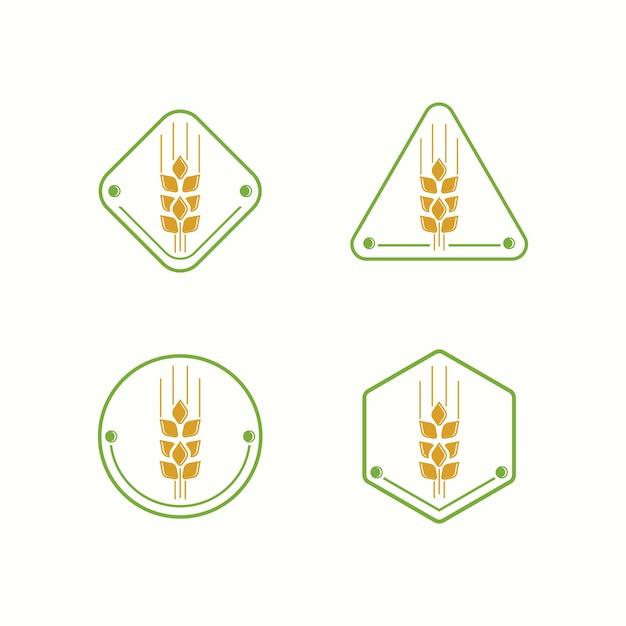 Modèle d'illustration blé logo ferme Vecteur Premium