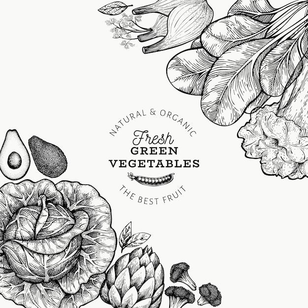 Modèle De Légumes Verts. Illustration De Nourriture Dessiné à La Main. Cadre Légume Style Gravé. Bannière Botanique Rétro. Vecteur Premium