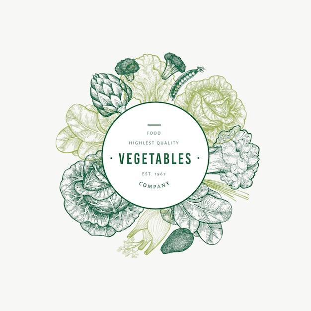 Modèle De Légumes Verts. Illustration De Nourriture Dessiné à La Main. Vecteur Premium
