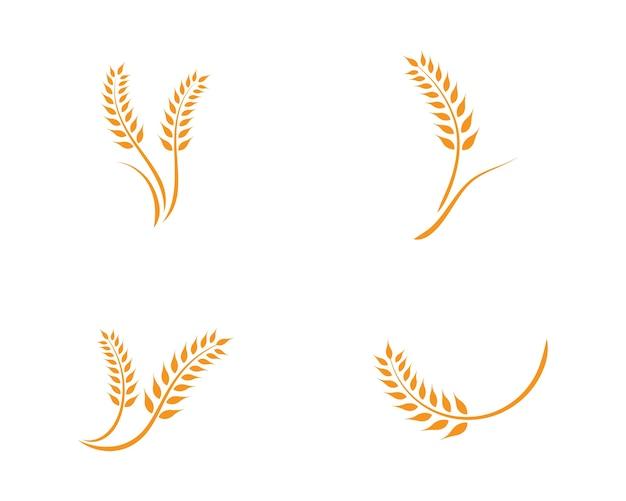 Modèle de logo de blé Vecteur Premium