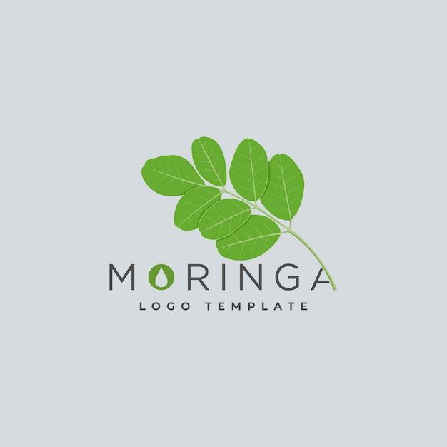 Modèle de logo d'huile de moringa Vecteur Premium