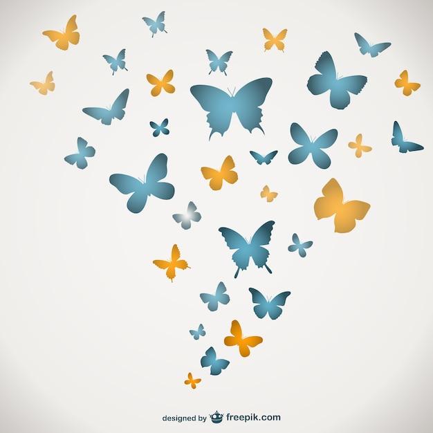 Mod le papillons de vecteur t l charger des vecteurs - Modele papillon ...