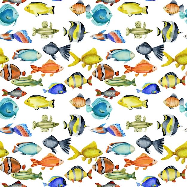 Modèle sans couture avec aquarelles de poissons exotiques tropicaux océaniques Vecteur Premium