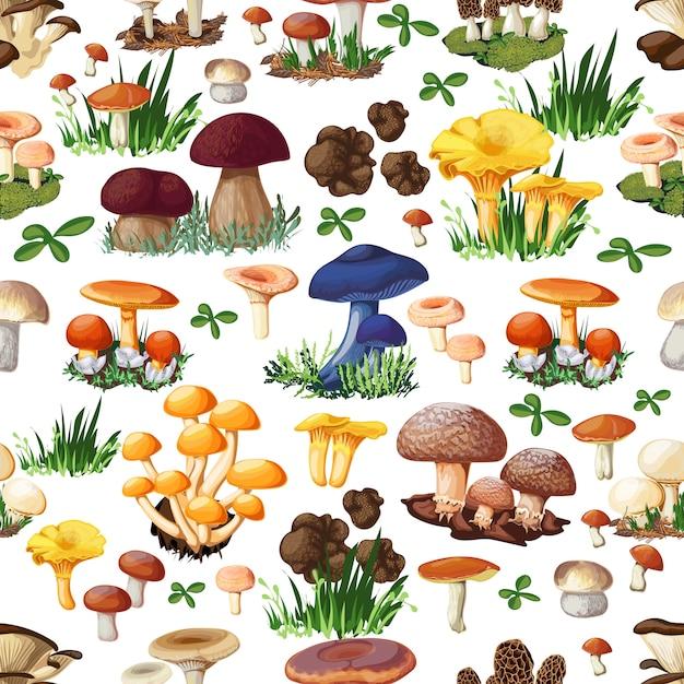 Modèle sans couture aux champignons Vecteur gratuit