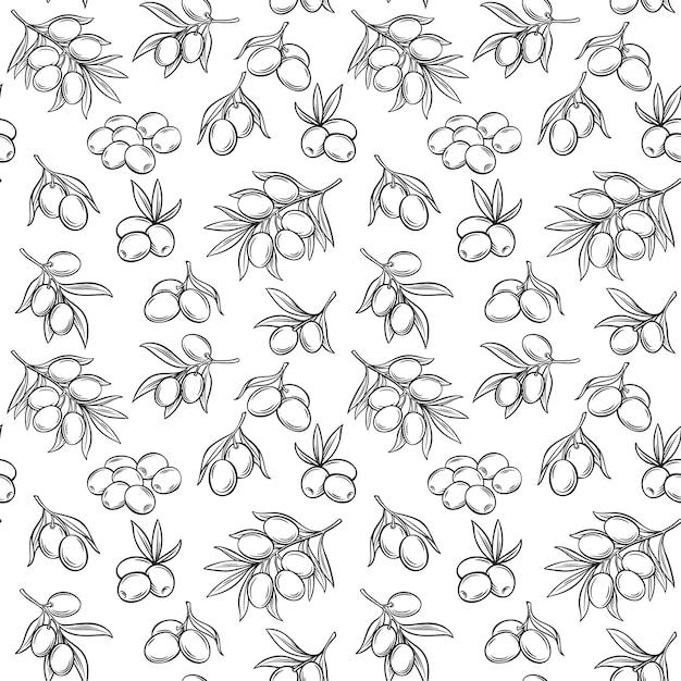 Modèle Sans Couture Aux Olives Vecteur Premium