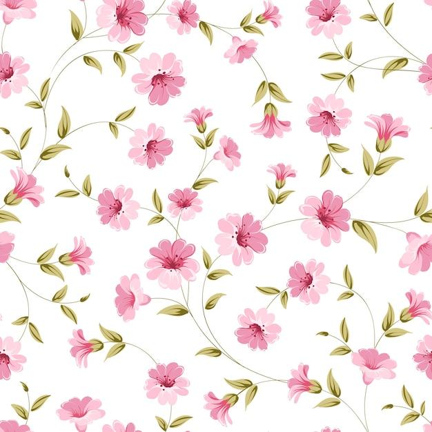 Modèle Sans Couture Botanique. Fleur En Fleurs Vecteur gratuit