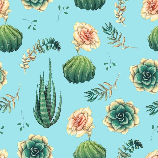 Modèle sans couture avec cactus et plantes succulentes Vecteur Premium