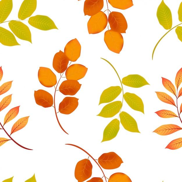 Modèle sans couture de feuille d'automne Vecteur Premium