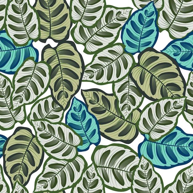 Modèle sans couture avec des feuilles tropicales Vecteur Premium