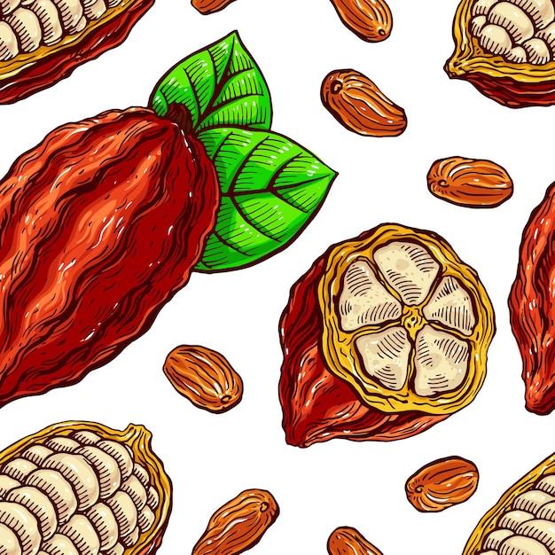 Modèle Sans Couture De Fèves De Cacao, De Fruits Et De Feuilles. Illustration Dessinée à La Main Vecteur Premium