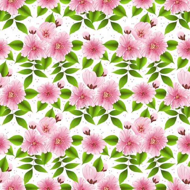 Modèle Sans Couture De Fleur De Sakura Vecteur gratuit
