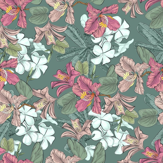 Modèle sans couture de fleurs bauhinia et plumeria Vecteur Premium