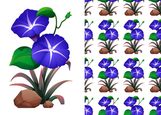 Modèle Sans Couture Avec Des Fleurs De Gloire Du Matin Bleu Vecteur gratuit