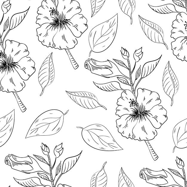Modèle sans couture de fleurs d'hibiscus avec des feuilles Vecteur Premium