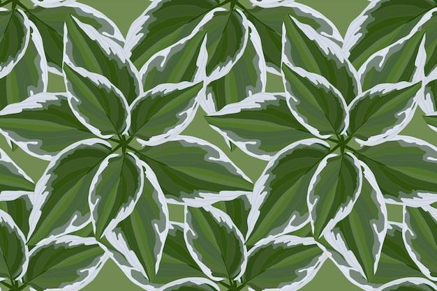 Modèle sans couture floral vector avec feuilles vertes Vecteur Premium