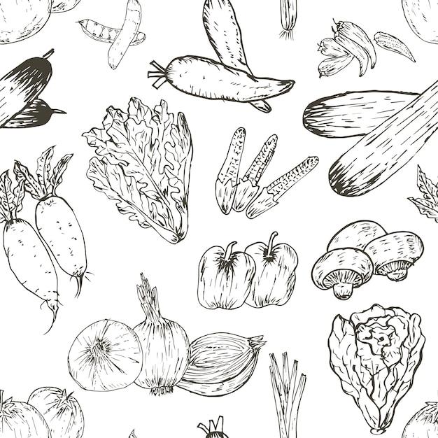Modèle Sans Couture Avec Fond De Légumes Dessinés à La Main. Herbes Et épices Biologiques, Dessins De Nourriture Saine Modèle Illustration Vectorielle. Vecteur Premium