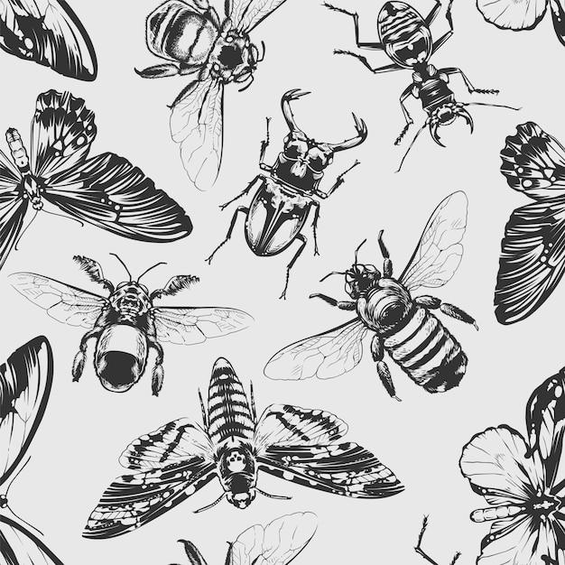 Modèle Sans Couture D & # 39; Insectes Vecteur Premium