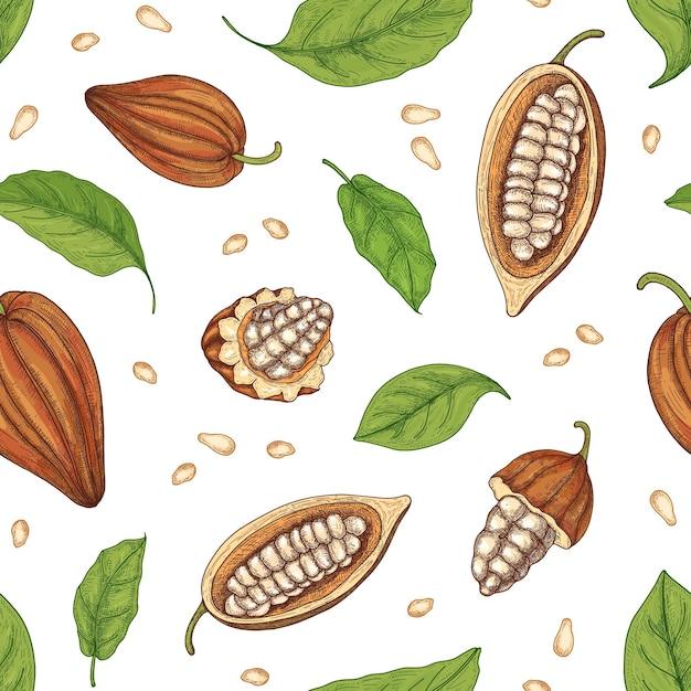 Modèle Sans Couture Naturel Avec Gousses Mûres Entières Et Coupées Ou Fruits De Cacaoyer, Haricots Et Feuilles Sur Fond Noir Vecteur Premium