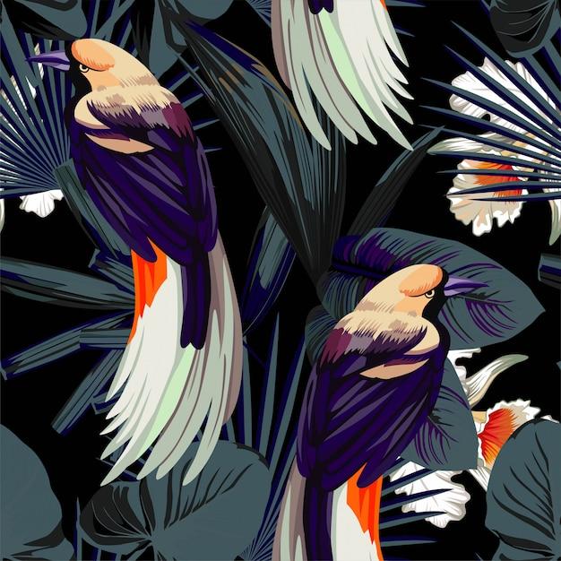 Modèle sans couture oiseaux, orchidées et nuit jungle Vecteur Premium