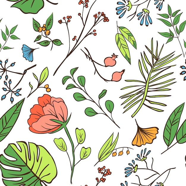 Modèle sans couture de plantes et d'herbes. elément de design ou carte d'invitation Vecteur gratuit