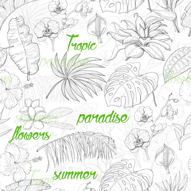 Modèle sans couture avec des plantes tropicales et des fleurs Vecteur Premium