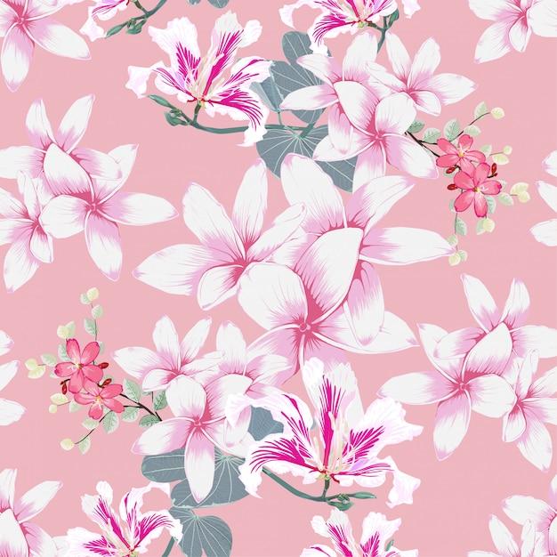 Modèle sans couture plumeria et fond pastel de fleurs sauvages rose. Vecteur Premium