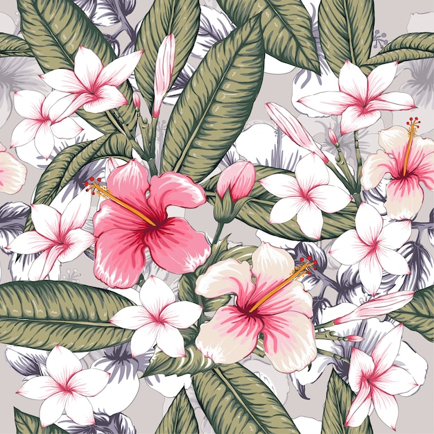 Modèle sans couture rose hibiscus, fleurs de frangipanier. Vecteur Premium