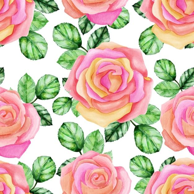 Modèle sans couture de roses aquarelle Vecteur Premium