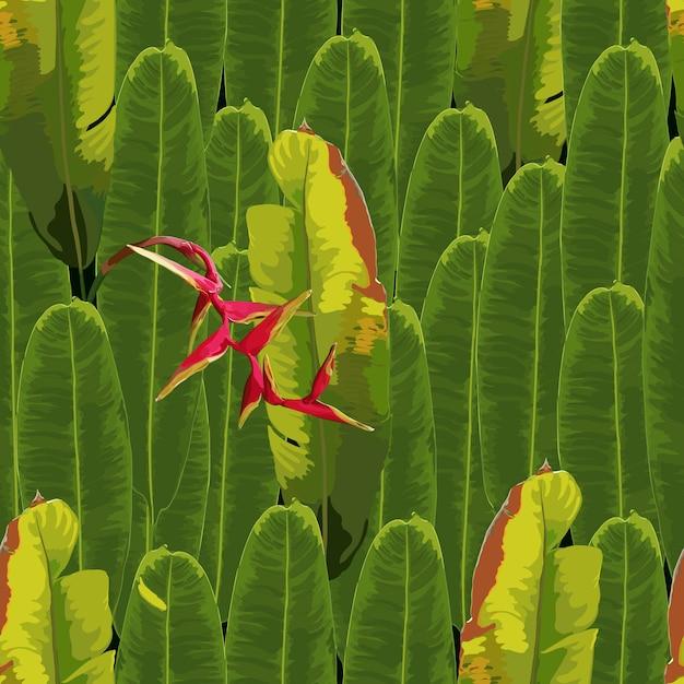 Modèle sans couture tropical avec fond de fleurs heliconia rouge Vecteur Premium