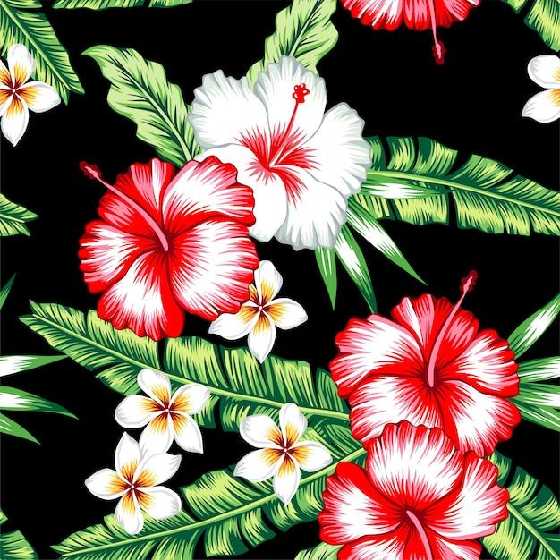 Modèle Sans Couture Tropical Vecteur Premium