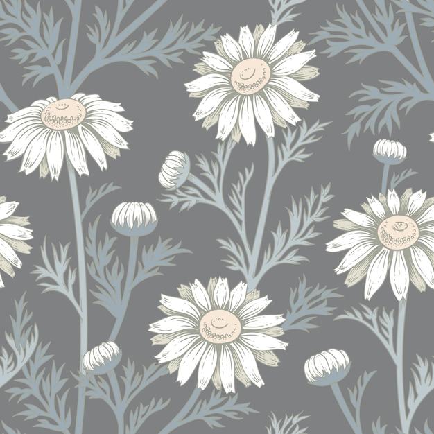 Modèle sans couture de vecteur avec des fleurs de camomille. Vecteur Premium