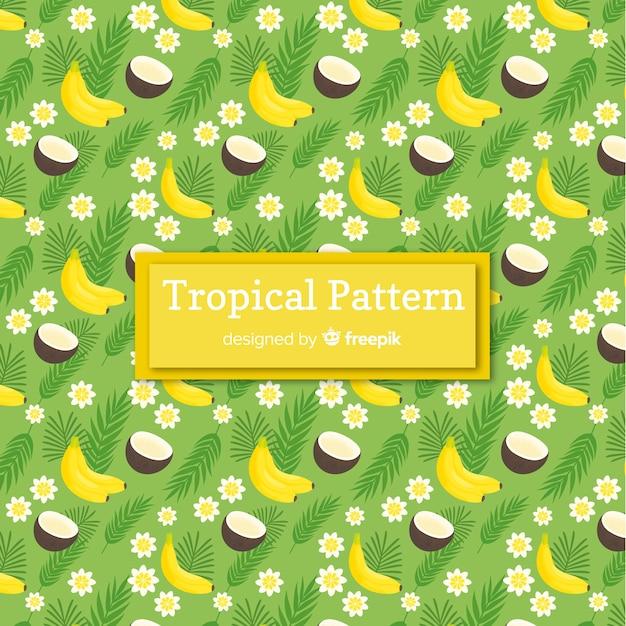 Modèle tropical coloré avec des fruits Vecteur gratuit