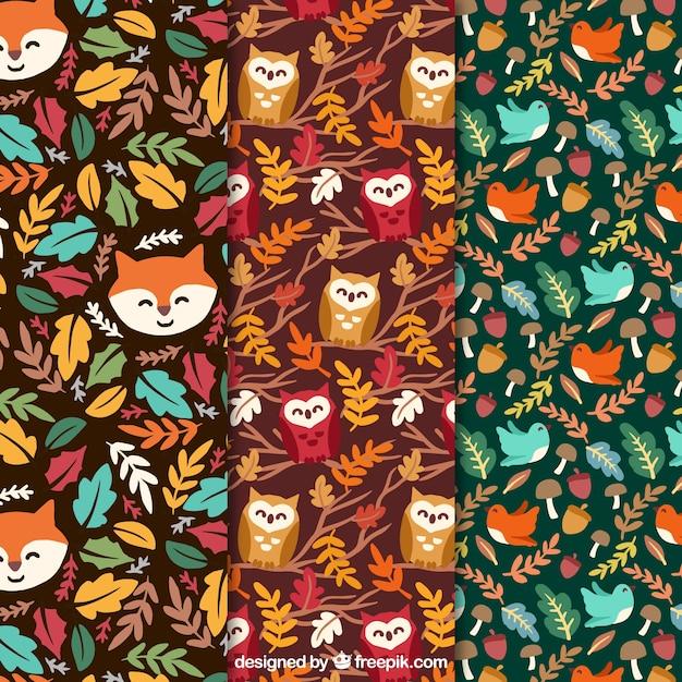 Modèles automne animaux belle série Vecteur gratuit