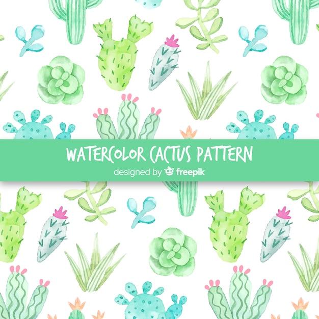 Motif de cactus à l'aquarelle Vecteur gratuit