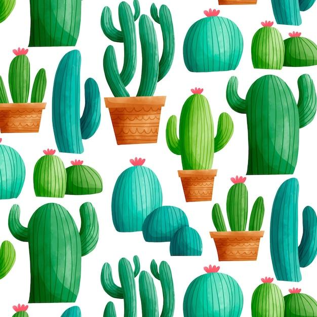 Motif De Cactus Coloré Vecteur gratuit