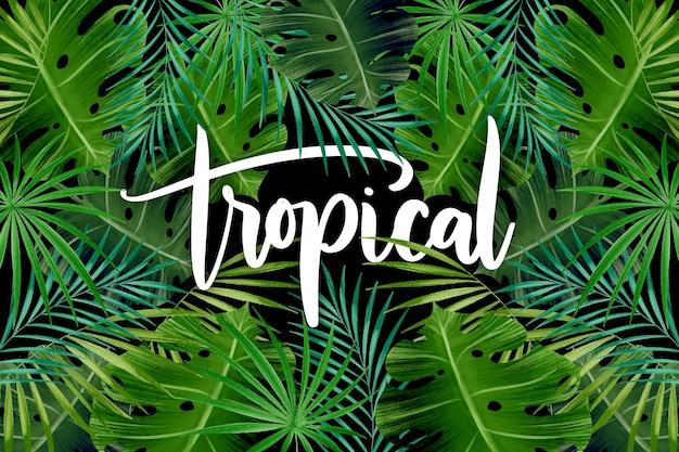 Motif De Feuilles Exotiques Lettrage Tropical Vecteur gratuit
