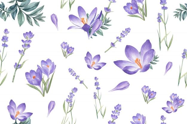 Motif de fleurs d'hiver avec crocus, lavande Vecteur gratuit