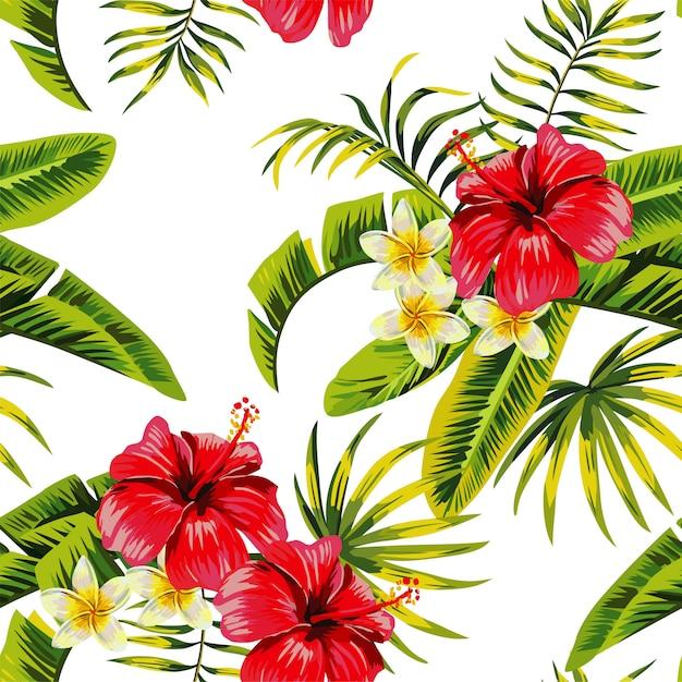 Motif de fleurs et de plantes tropicales Vecteur Premium