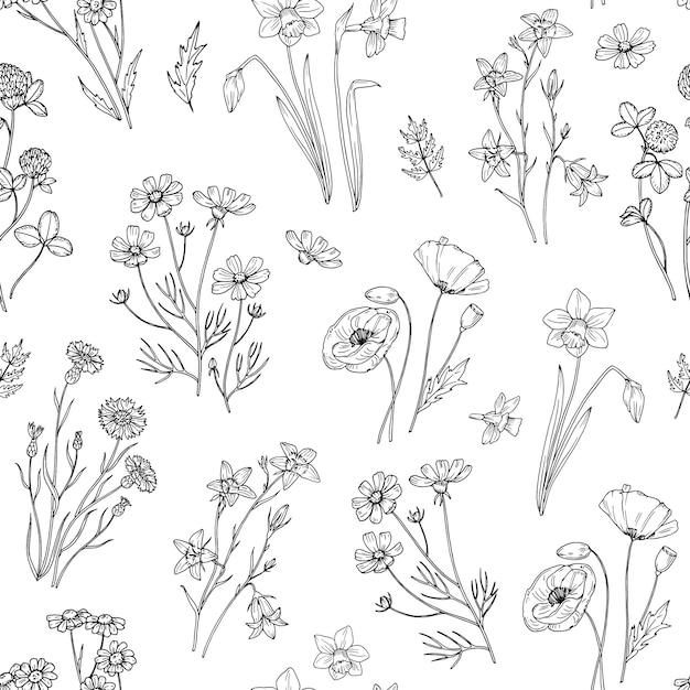 Motif De Fleurs Sauvages. Fond D'écran Floral Sans Couture Avec Des Fleurs Sauvages. Tissu Vintage. Vecteur Premium