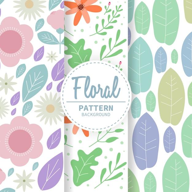 Motif floral Vecteur Premium