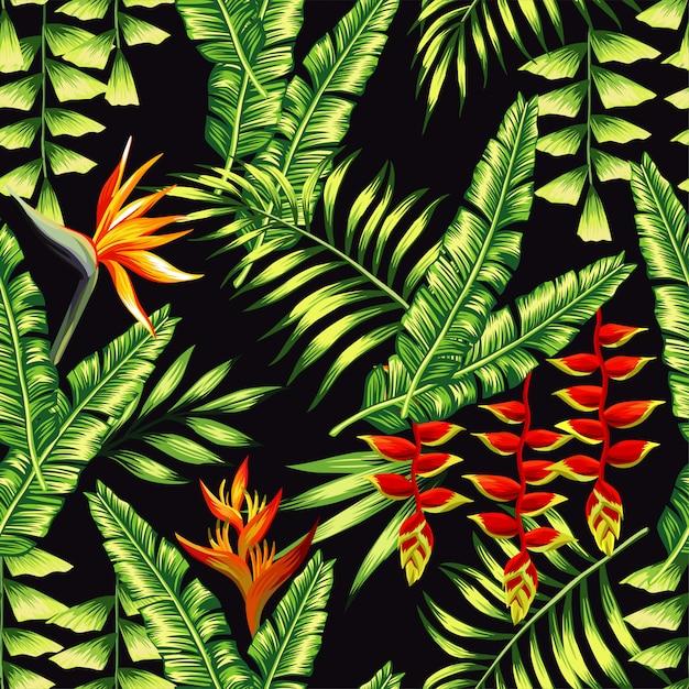 Motif de plantes tropicales et de palmiers Vecteur Premium