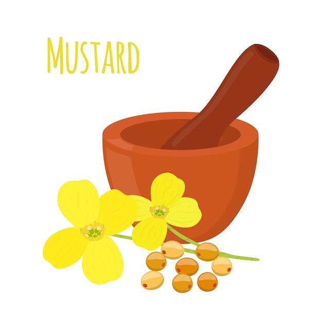 Moutarde, graines avec mortier, pilon Vecteur Premium