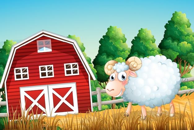 Un mouton à la ferme Vecteur Premium