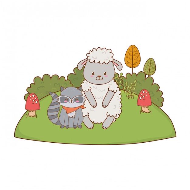 Mouton mignon et raton laveur dans le champ Vecteur Premium