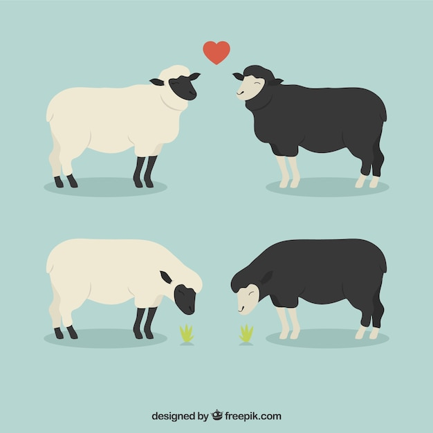 Moutons Dans L'amour Vecteur gratuit